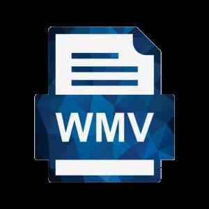 Sample WMV File